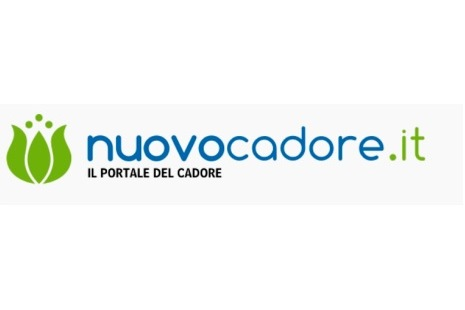 nuovocadore.it