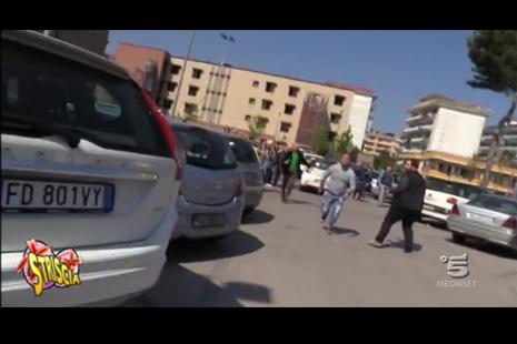 aggressione_abete_marano
